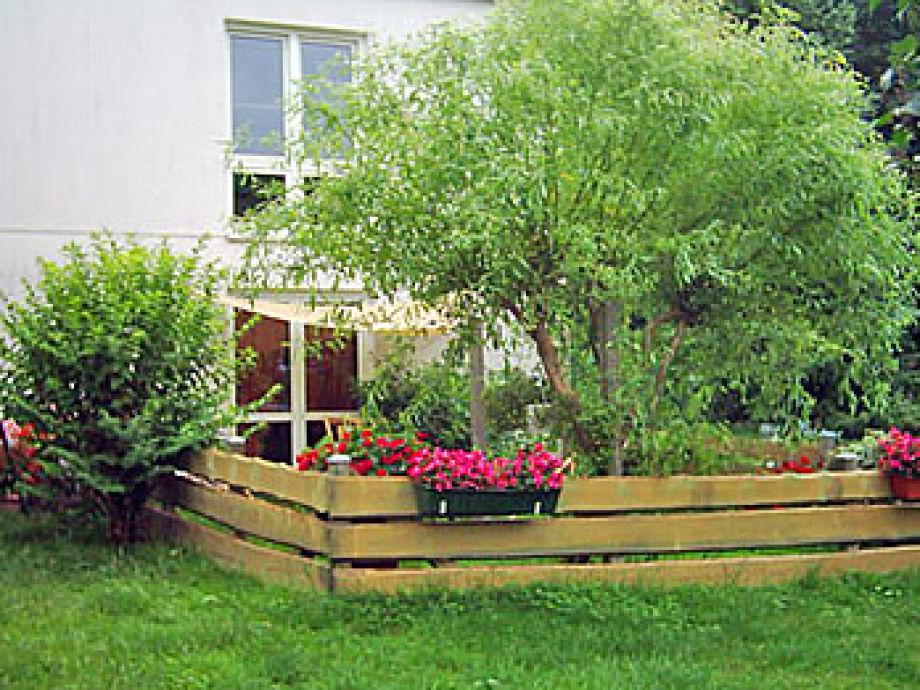 Ein Blick auf den Garten