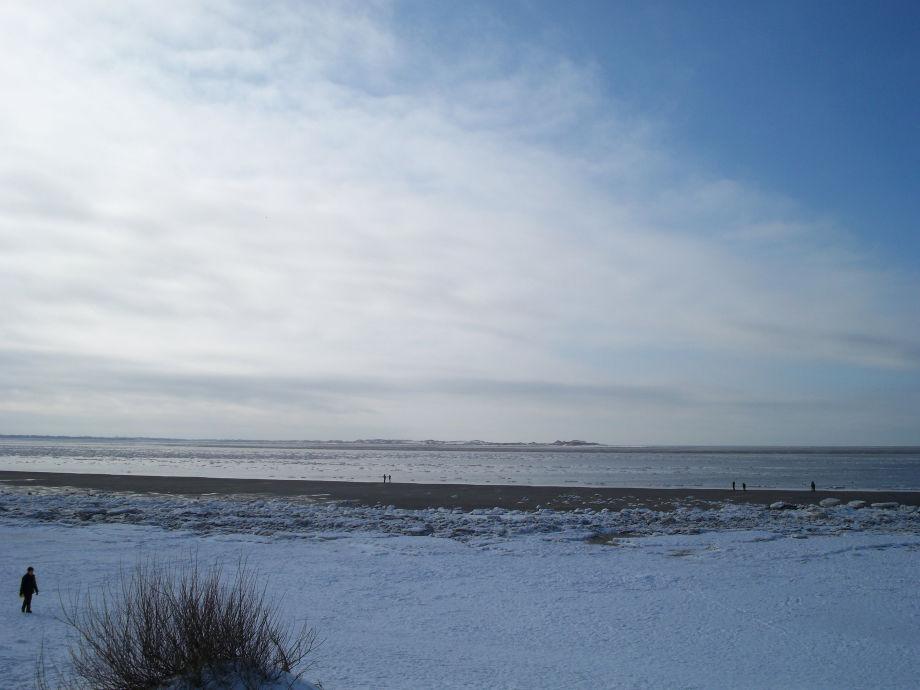 Nordsee K Chen ferienwohnung welle nordsee föhr frau doris drews
