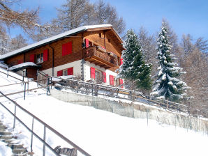Holiday apartment in Chalet Steinmaetje