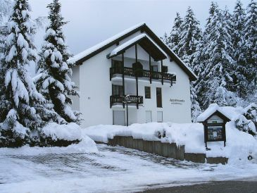 Apartment Holiday and vacation in Titisee Black Forest