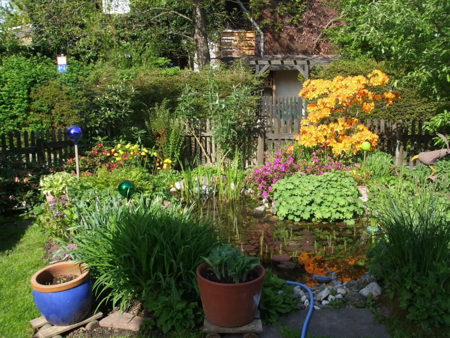 Frühsommer im Garten