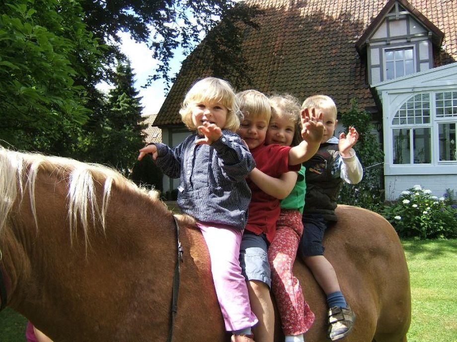 Ponyreiten und vieles mehr auf dem Hibbens-Hof