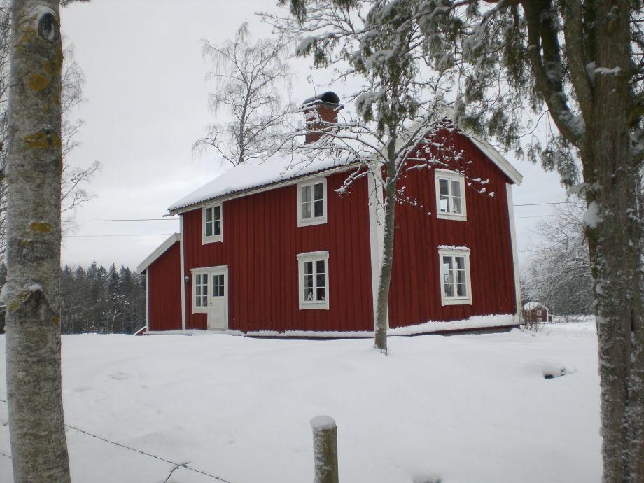 Lilla Skog im Winter