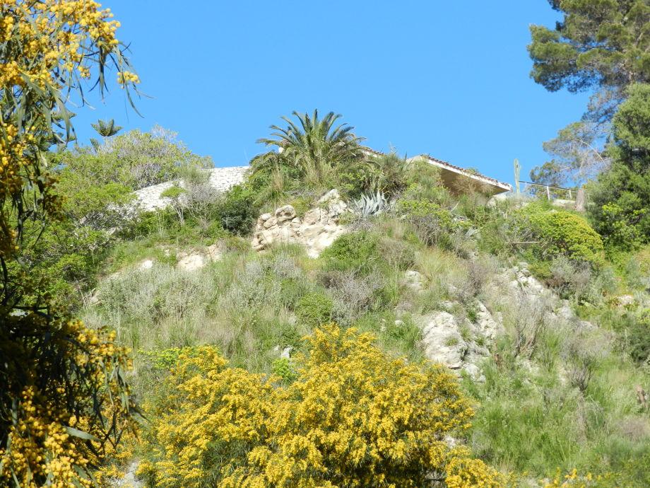 Coccorino Mare: Villa Zappani