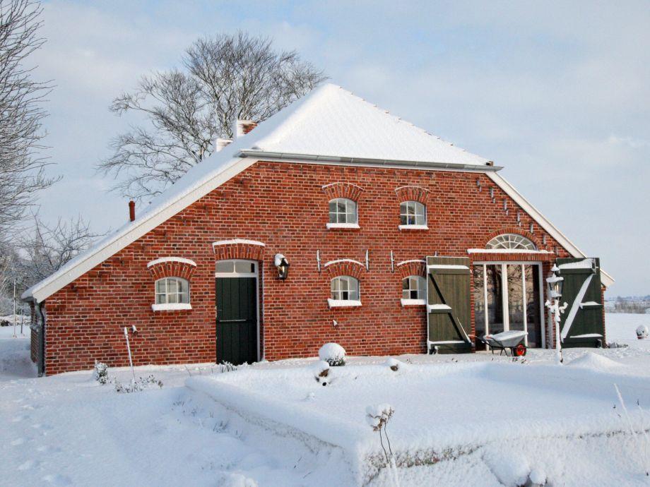 Im Winter kommen Rehe bis auf die Terrasse.