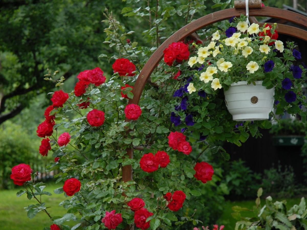 Holzhütte Garten war schöne stil für ihr wohnideen