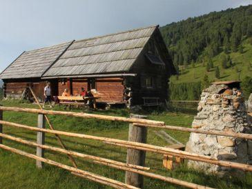 """Berghütte Familie Gruber """"Davidhütte"""""""