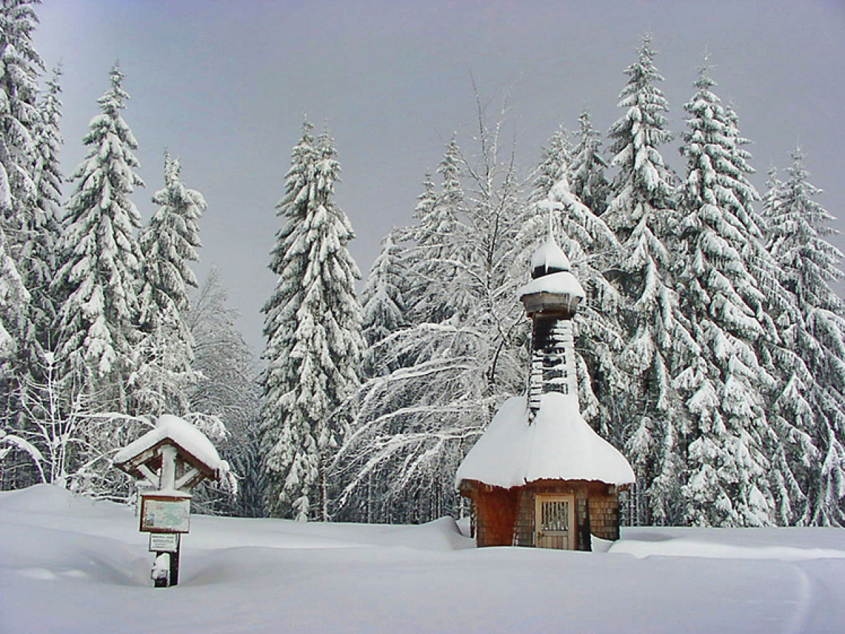 Ferienwohnung stadler bayerischer wald nationalpark for Fischteich im winter