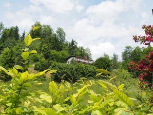 Ferienhaus - Chalet Panoramablick