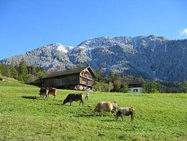 Ferienwohnung Biobauernhof Oberstufels