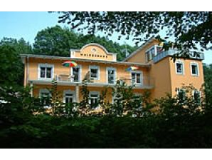 Holiday apartment Villa Waldesruhe