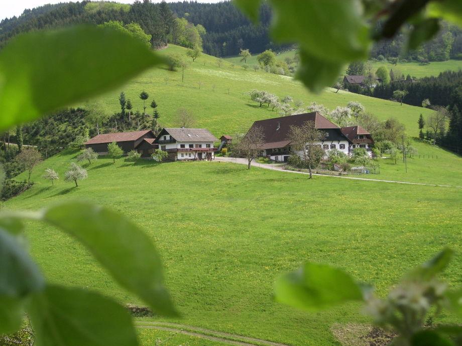 Unser Bauernhof mit Ferienhaus