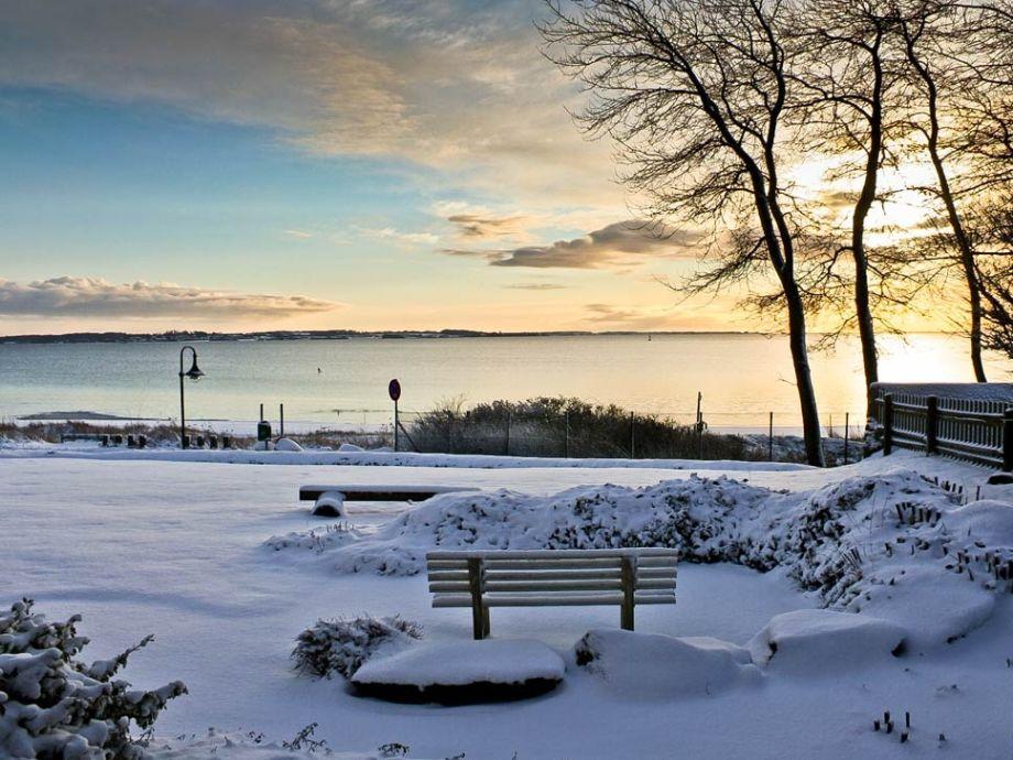 Fensterblick im Winter