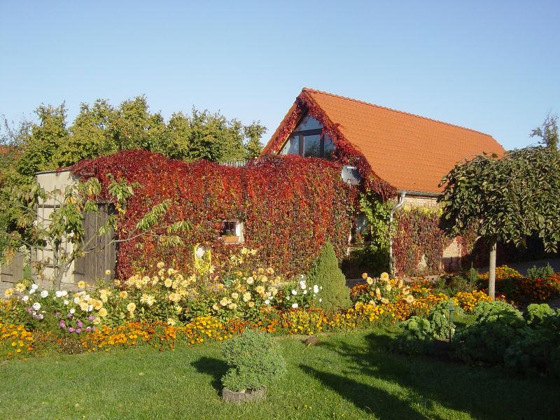 Holiday apartment Untere Ferienwohnung - Familie Jaensch