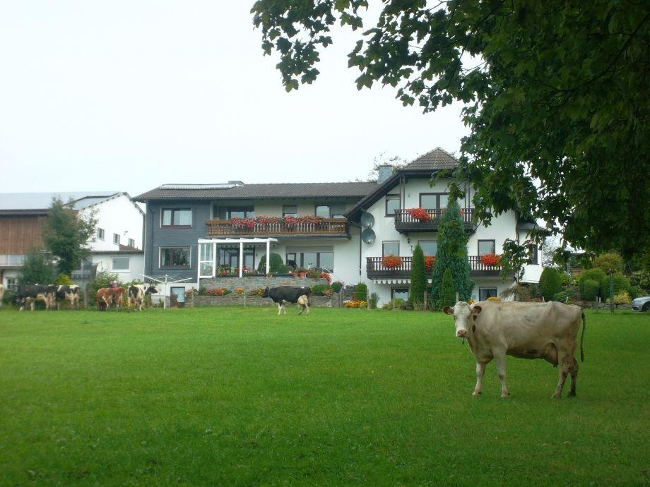 Buchenhof-untere Ansicht