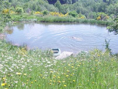 The Pond House (la Maison des Etangs)