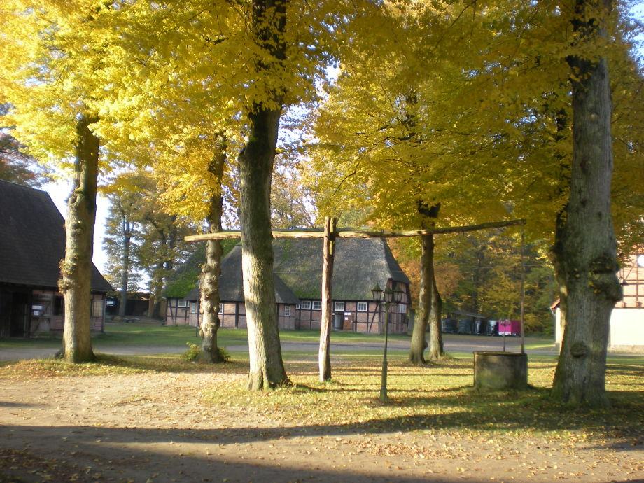 Herbst auf dem Rehrhof