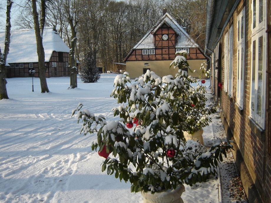 Schneelandschaft auf dem Rehrhof