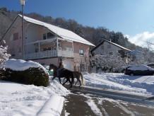 Ferienwohnung 29€ für 2Pers. zusam. Mittelgebirge Spessart