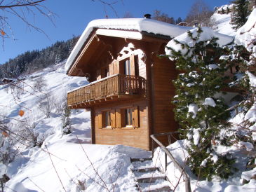 "Chalet right on the piste ""4 Vallees"""
