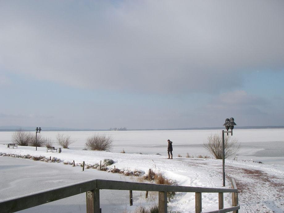 Die verschneite Winterlandschaft