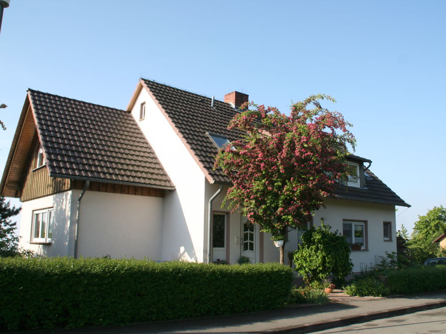 holiday apartment Friedewald in the summertime