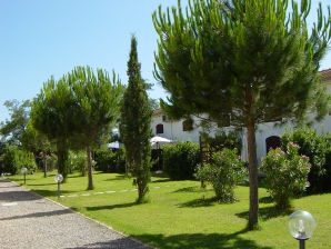 Holiday apartment Il Granaio