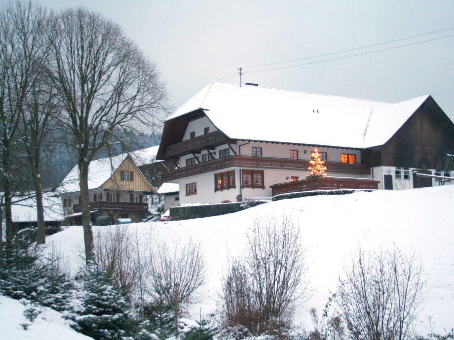Der Hugeseppehof im Winter