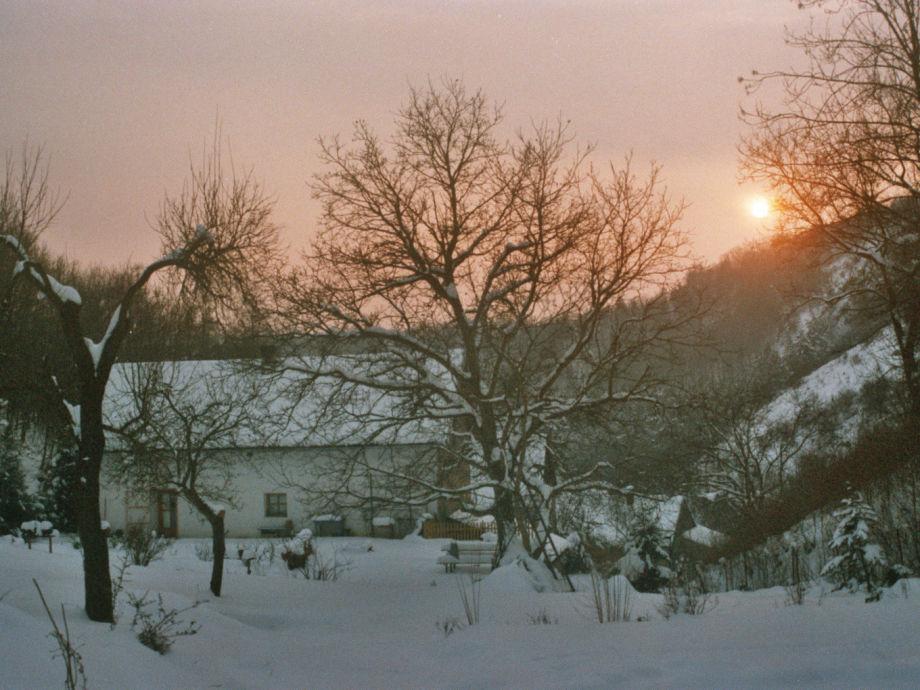 Wintersonne - Blick vom hinteren Garten
