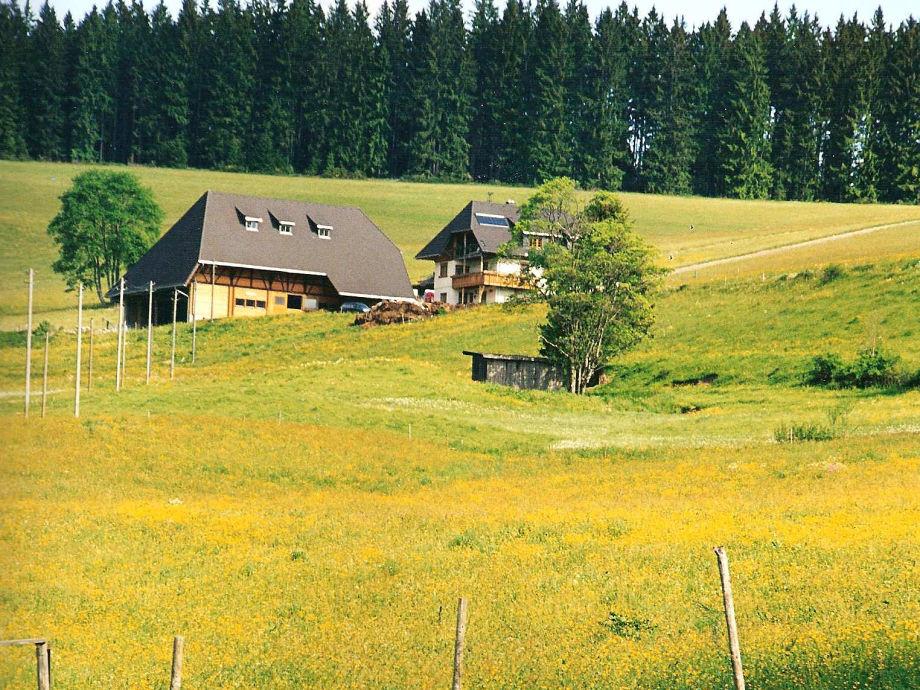 Unser Kleinklausenhof mitten in den Wiesen