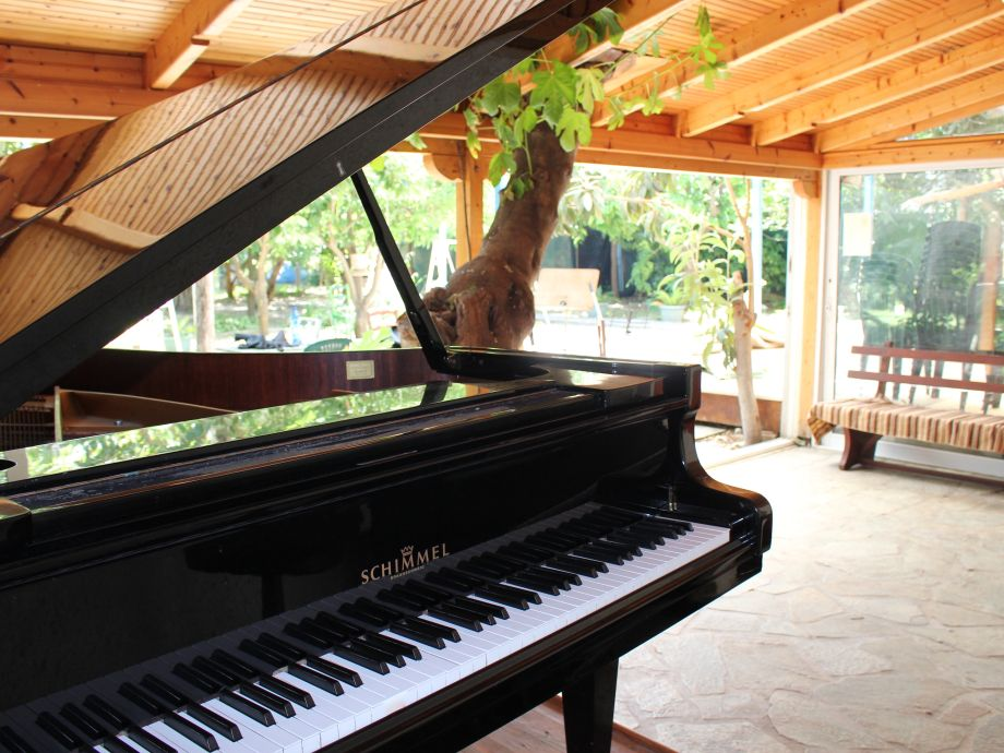 Grandpiano in our  Garden ,10 Meters from the Beach!