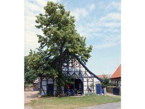 """Ferienhaus """"Haus Lavendel"""""""