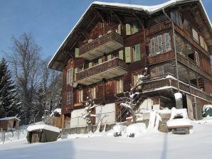 Holiday apartment at the Chalet Berna