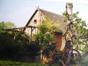 Ferienhaus im Biosphärenbereich des Spreewaldes