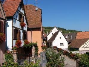 Ferienwohnung Gîtes de la Source bei Colmar 68G3711