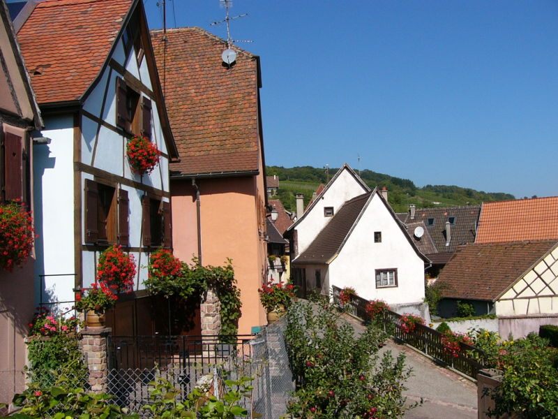 Holiday apartment in Alsace near Colmar