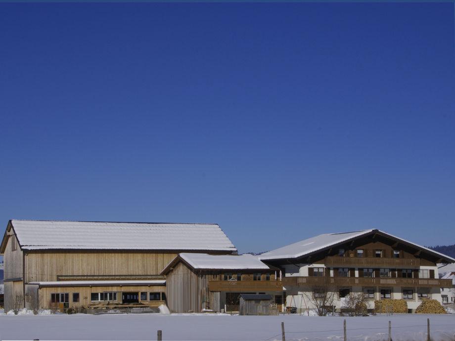 Winter am Bauernhof Greber in Andelsbuch