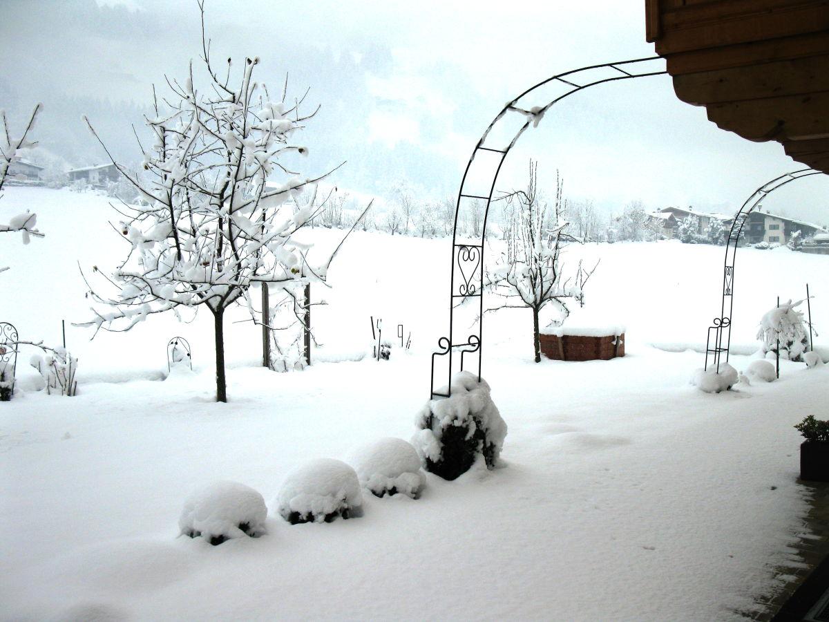 Ferienwohnung apart elfriede zillertal frau elfriede klocker - Garten im winter ...