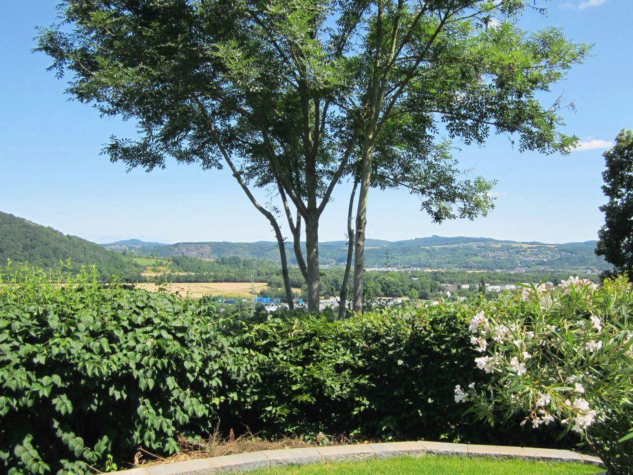 Blick  vom Garten ins Rheintal