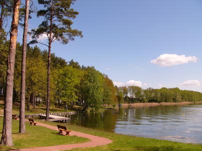 Am Ellbogensee - Seeblick