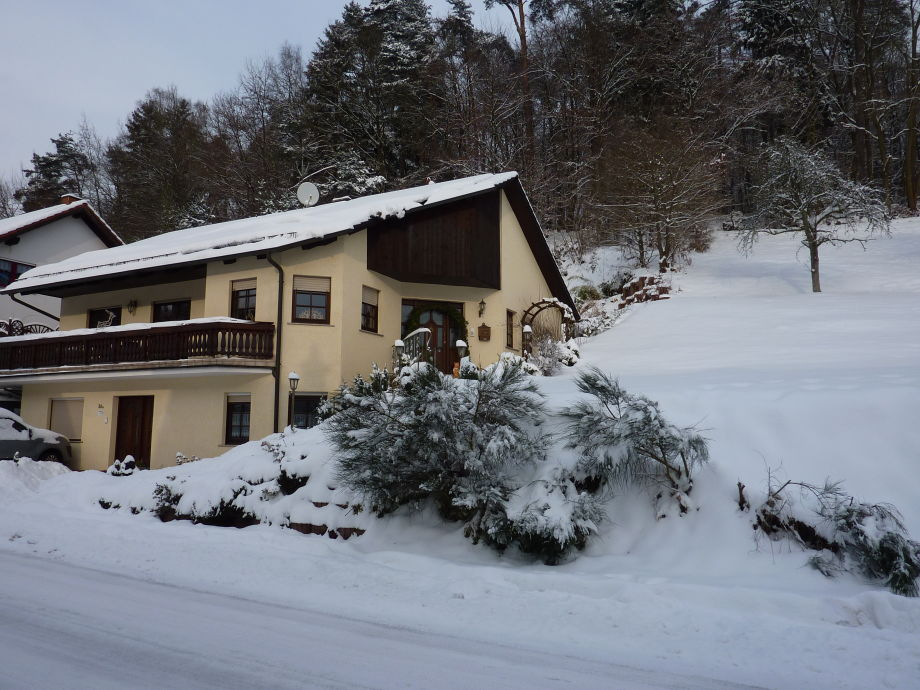 FW Rosi im Winter 2010