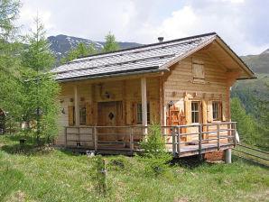 Berghütte Wallnerhuette