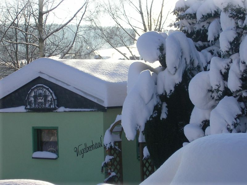 Ferienhaus Vugelbeerhäusl'
