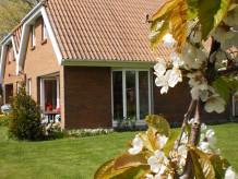 Ferienhaus - Fehmarn