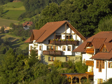 """Holiday apartment """"Panoramic View"""" - Visit the Black Forest!"""