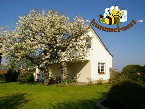 """Ferienhaus """"Hummel-Nest"""""""