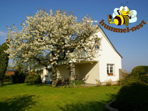 "Holiday house ""Hummel-Nest"""