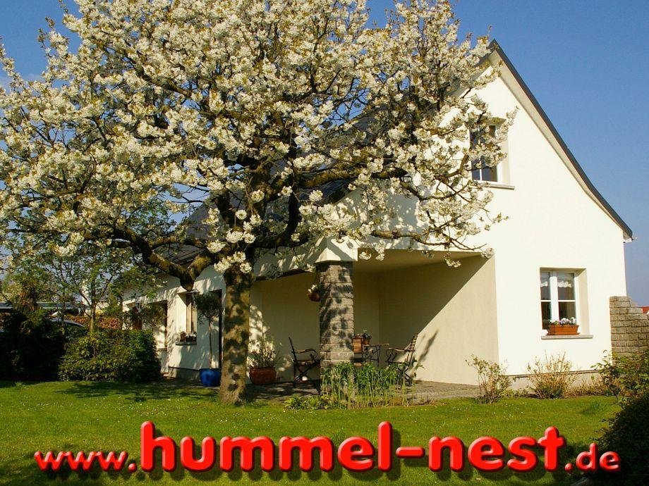 Das Hummel-Nest erwartet Sie...