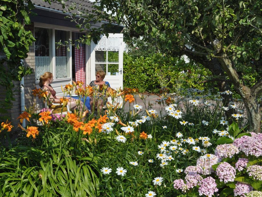 Außenaufnahme Mini Villa Asterlaan