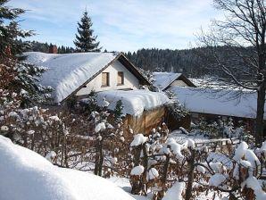 Ferienhaus Haus Hotzi